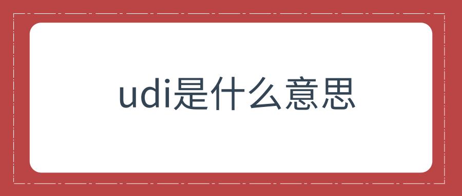 udi是什么意思