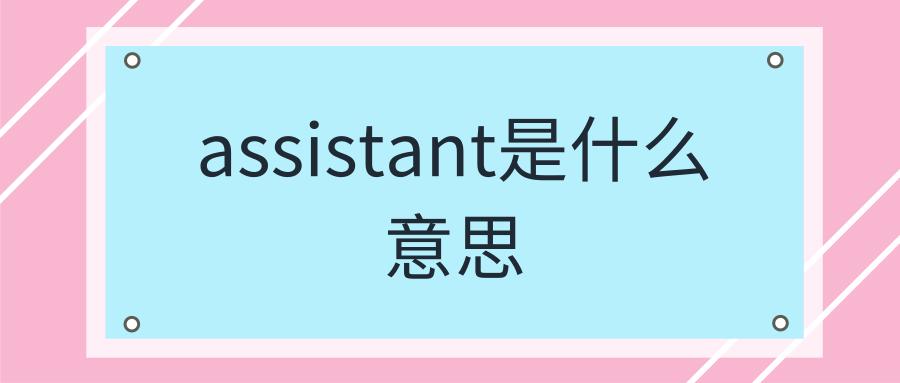 assistant是什么意思