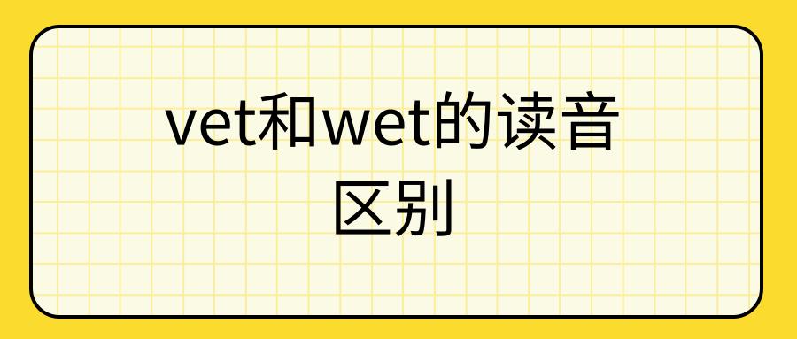 vet和wet的读音区别
