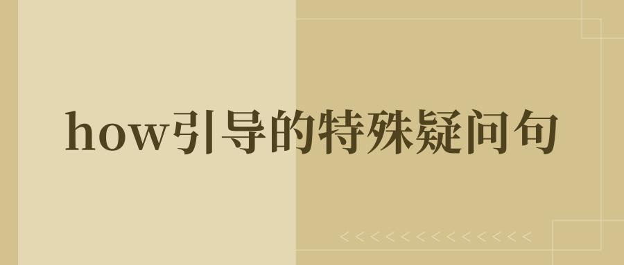 how引导的特殊疑问句